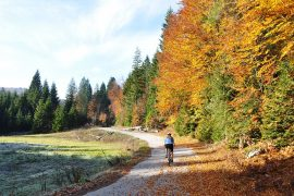Cycling Plitvice Lakes landscape