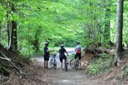 Istrian Countryside Cycling trip header 3