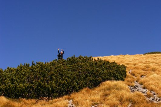 Velebit Croatia Walking
