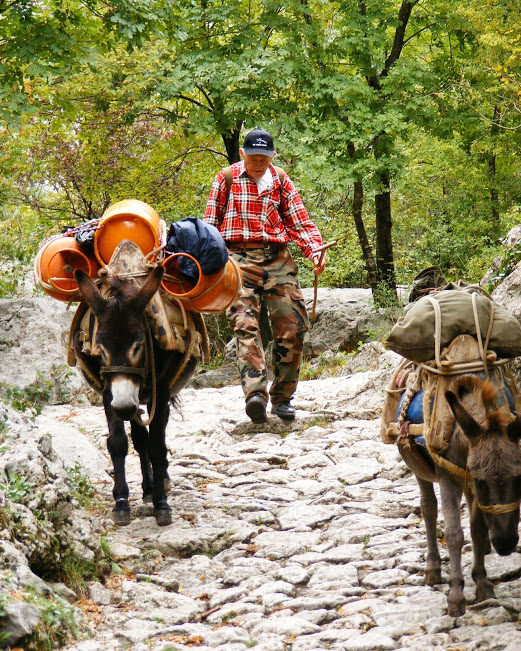 Villagers with his donkeys. Paklenica, Velebit.