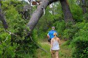 Lopud Island Hiking