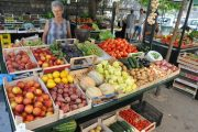 Ston Farmers Market